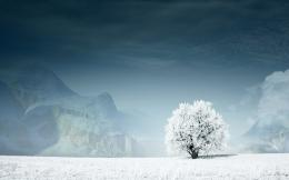43 Beautiful Winter WallpapersWallpapers for dekstop 1265