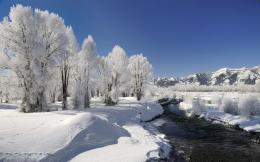 Winter landscape wallpapers and images 881