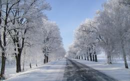 winter landscape snow forest hd wallpaper 603