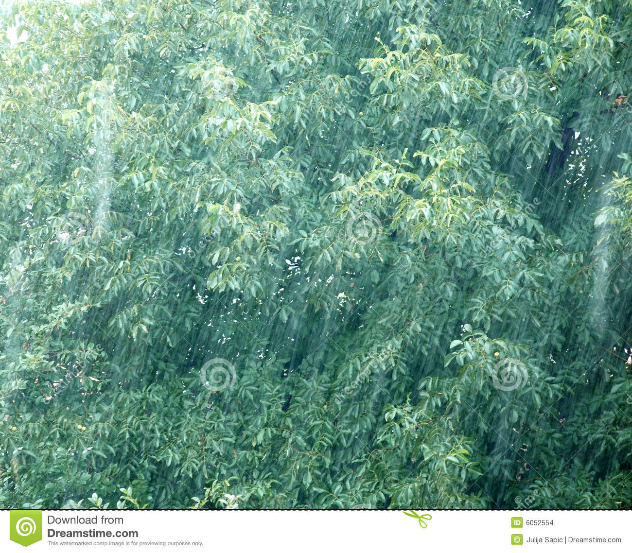 Rainy Day Stock ImagesImage: 6052554 1526
