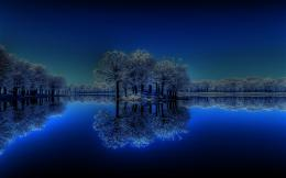 Winter Night The Lake Picture Calm Tree Hd hd wallpaper #1037053 1184