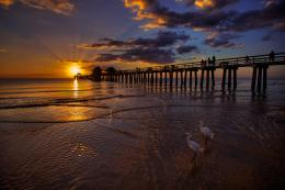 naples fishing pier sunset at beach 1340