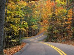 twisty road, autumn hills | road to nowhere | Pinterest 621