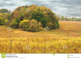 Autumn Hills Before A Rain Stock PhotographyImage: 16695362 1015