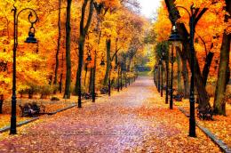 Autumn lamps park walk nature fall leaves wallpaper 1184