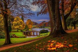 forest park walk river autumn trees alley leaves wallpaper background 1471