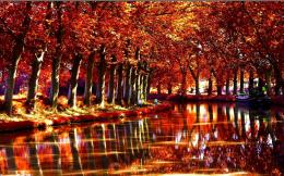 Autumn forest river reflections boat nature wallpaper 728