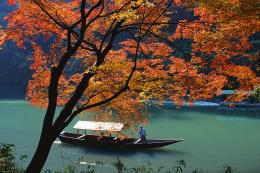 River Boat Ride by Autumn Tree Arashiyama, Kyoto, Japan 222