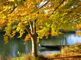 house boat on a river in autumn wallpaper ForWallpaper com 650