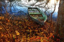 Lost boat trees river autumn nature wallpaper 537
