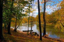 Sky, forest, river, boat, trees, leaves, autumn, landscape wallpapers 1207