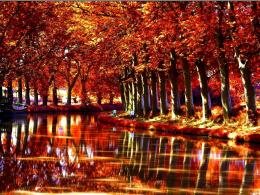 Autumn forest river reflections boat nature 1280x960 1121
