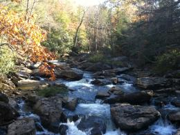 Babcock State Park in West Virginia | Why I love Fall! | Pinterest 287