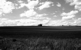black and white landscape by i dunnoDesktop Wallpaper 743