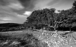 Landscape Black And Whitenature wallpaper featuring landscapes 1219