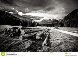 images of ` Beautiful Tatry mountains landscape in black and white 1403