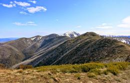 the ridgefrom right to centre of the phototowards Mt Feathertop 531