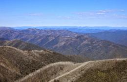 Scenery of Victorian Alps from the Razorback Trail 123