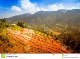 Beautiful Mountain Landscape Royalty Free Stock PhotoImage 1160