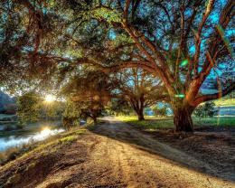 River sunset hdr trees road nature 1280x1024 835
