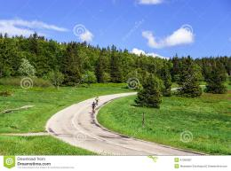 Beautiful Road In Green Fields, Natural Landscape Stock PhotoImage 362