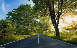 Beautiful road wallpaper #8666Open Walls 488