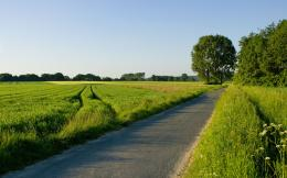 Green Country RoadScenic Wallpaper Image featuring Roads And Paths 121