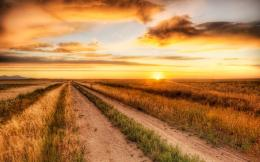 Inspirational Thursday Country Roads 235
