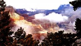 Grand canyon morning trees mist beautiful:High Contrast 414