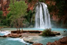 Havasu Falls, Havasupai Reservation, Grand Canyon National Park 781