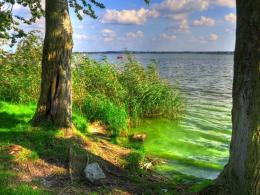 Similar wallpapers for Green lake Hdr 1158