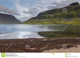 Colorful fiord landscape in Iceland with water reflection 431