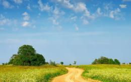 Countryside path wallpaperNature wallpapers#27055 1608
