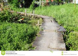 Wooden Path In Countryside Stock PhotoImage: 31817620 1662