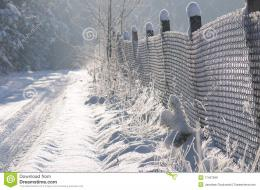Countryside Path Covered With Snow Royalty Free Stock PhotosImage 1338