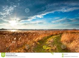 Rural Trail through Grassy Field on Lakeside during Sunset leading to 1558