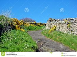 pathway tranquil countryside path clear 53997375 jpg 548
