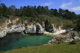 Photo of Point Lobos State ReserveAbove China Cove, California 470