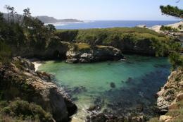 Photo of Point Lobos State ReserveChina Cove, California 896
