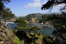 Photo of Point Lobos State ReserveBluefish Cove, California 533