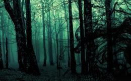 DarkForest Wallpaper 532