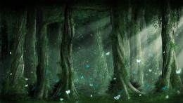 Dark Forest Backgrounds, wallpaper, Dark Forest Backgrounds hd 1804