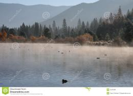 Mist rising from mountain lake in early morning gives lake a pastel 278