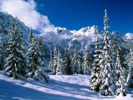 Mountain Winter Wallpaper674804 796