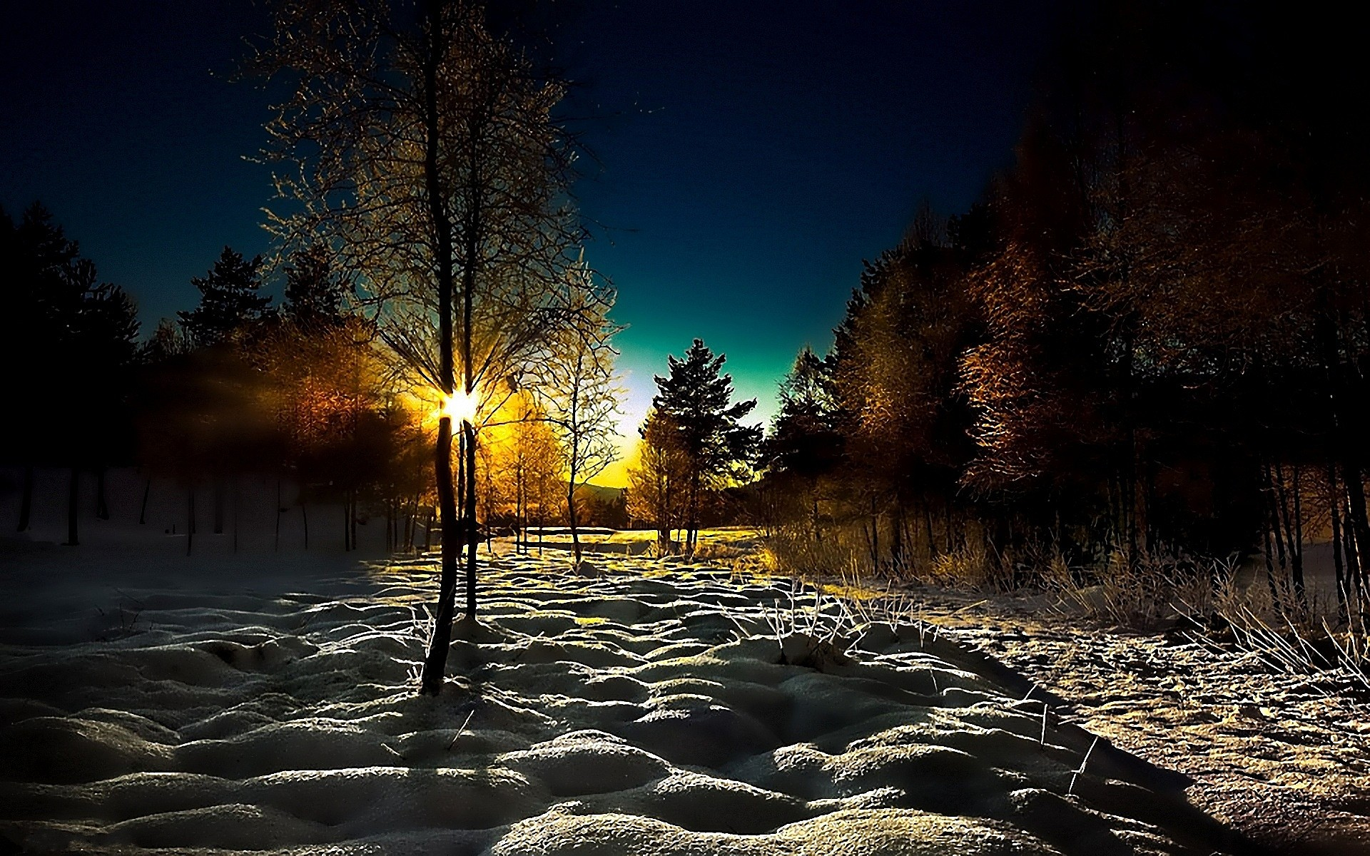 Dawn of the sun in the winter in the woodsScenery pictures for a 1138