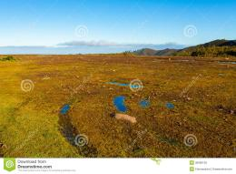 Flat Landscape Royalty Free Stock ImagesImage: 36596139 1168