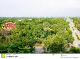 Flat Landscape In Central Thailand Stock PhotographyImage: 15010652 1110