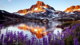 Mystery Wallpaper: Mountain, Rock, Lake, Flowers 223