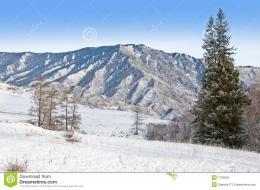 Peak Of Mountain And Fur treeWinter In SiberiaStock Photography 1007