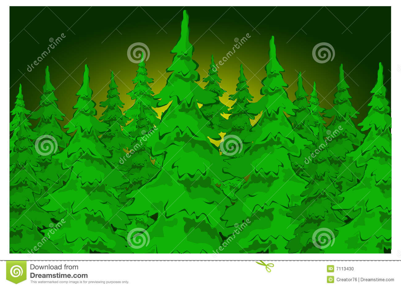 Christmas fir trees in the night forestWinter vector illustration 261